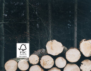 FSC logo with logs in front of forest
